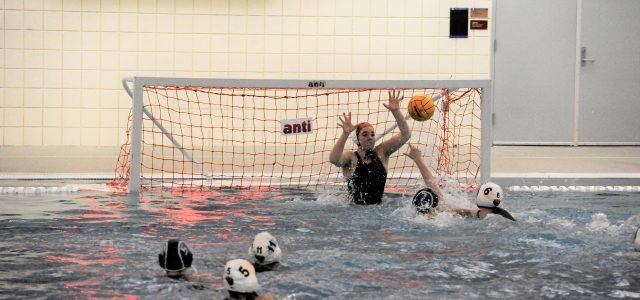 The Lady Wolverine Water Polo Team got more experience playing the defending State Champions last week in a tough game against Gig Harbor. Natasha Schmid, Katie Duff and Elena Acevedo (twice) captured […]